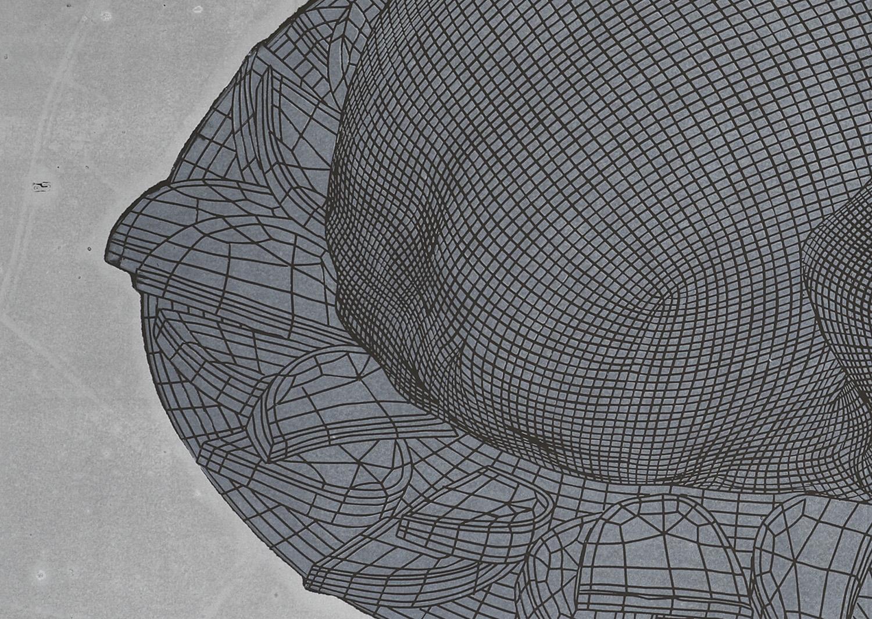 CHICKEN linocut_detail