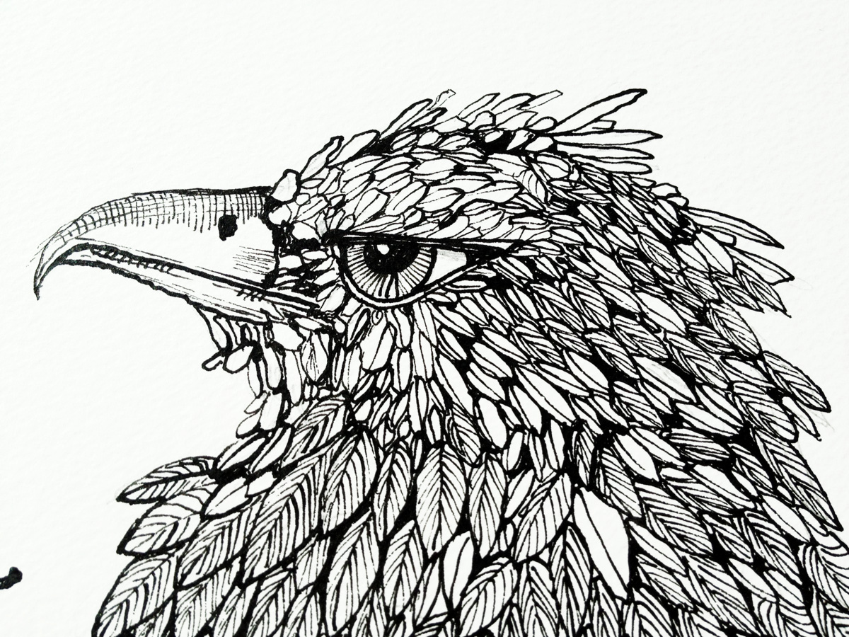 Modern Line Drawing Artists : Drawings animals botanical people in surrealistic