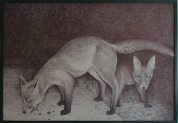 Fox with cup pen bic ballpoint pen drawing illustration black and white, good technique, talented artists, online art gallery