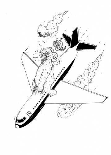 aircraft, koala bear, illustrations and drawings, art, art gallery, gallery, funny drawing, street art, pop culture, inspiration,