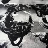 engravings, abstract, figurative, minimalistic, monochrome, surrealistic, nature, black, white, ink, paper, abstract-forms, contemporary-art, copenhagen, danish, decorative, design, interior, interior-design, modern, modern-art, nordic, scandinavien, Køb original kunst og kunstplakater. Malerier, tegninger, limited edition kunsttryk & plakater af dygtige kunstnere.