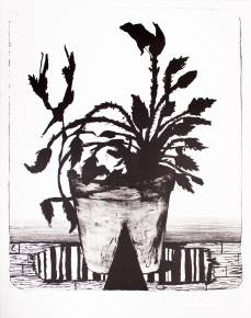 art-prints, lithographs, engravings, aesthetic, figurative, illustrative, landscape, botany, nature, black, grey, white, ink, paper, contemporary-art, danish, decorative, design, flowers, interior, interior-design, modern, modern-art, nordic, plants, scandinavien, Buy original high quality art. Paintings, drawings, limited edition prints & posters by talented artists.