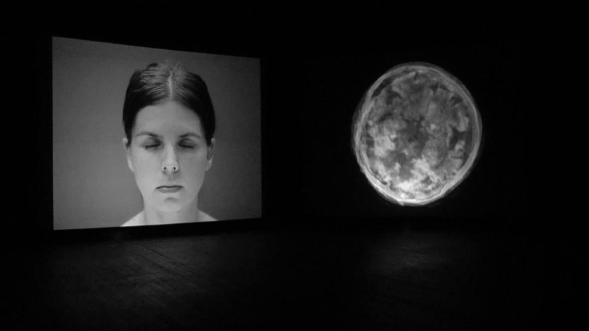 exhibition, interactive art installation, artist, gallery,